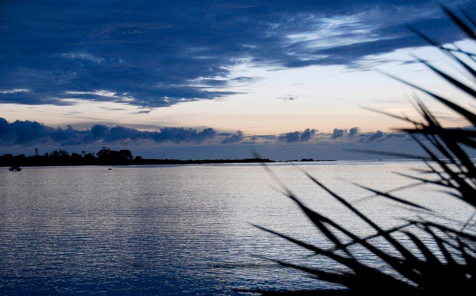 Landscape -Kilwa, Tanzania-_n
